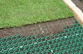 Core Grass
